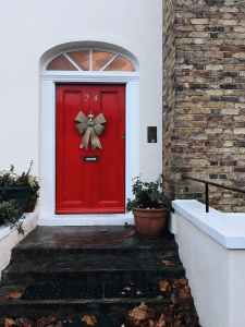 potted plant near red wooden door